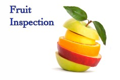 fruitinspection